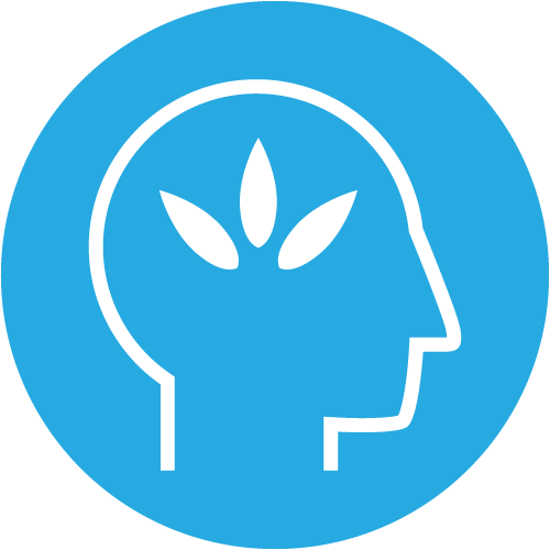 Enhance-The-Bodys-Natural-Recovery-Process-Icon